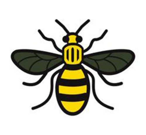 Manchester Bee Appeal 2017